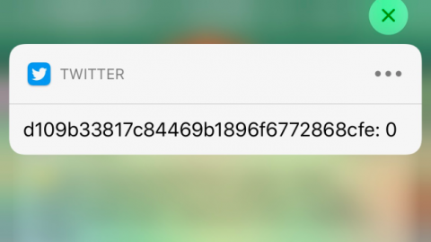Something Bricked Twitter's Notifications System