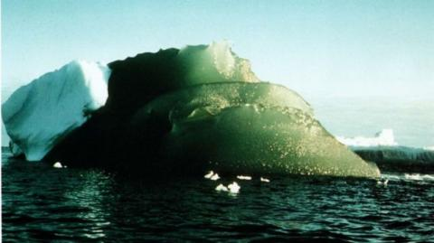 Scientists Might Finally Know Why Some Icebergs Are Bright Green