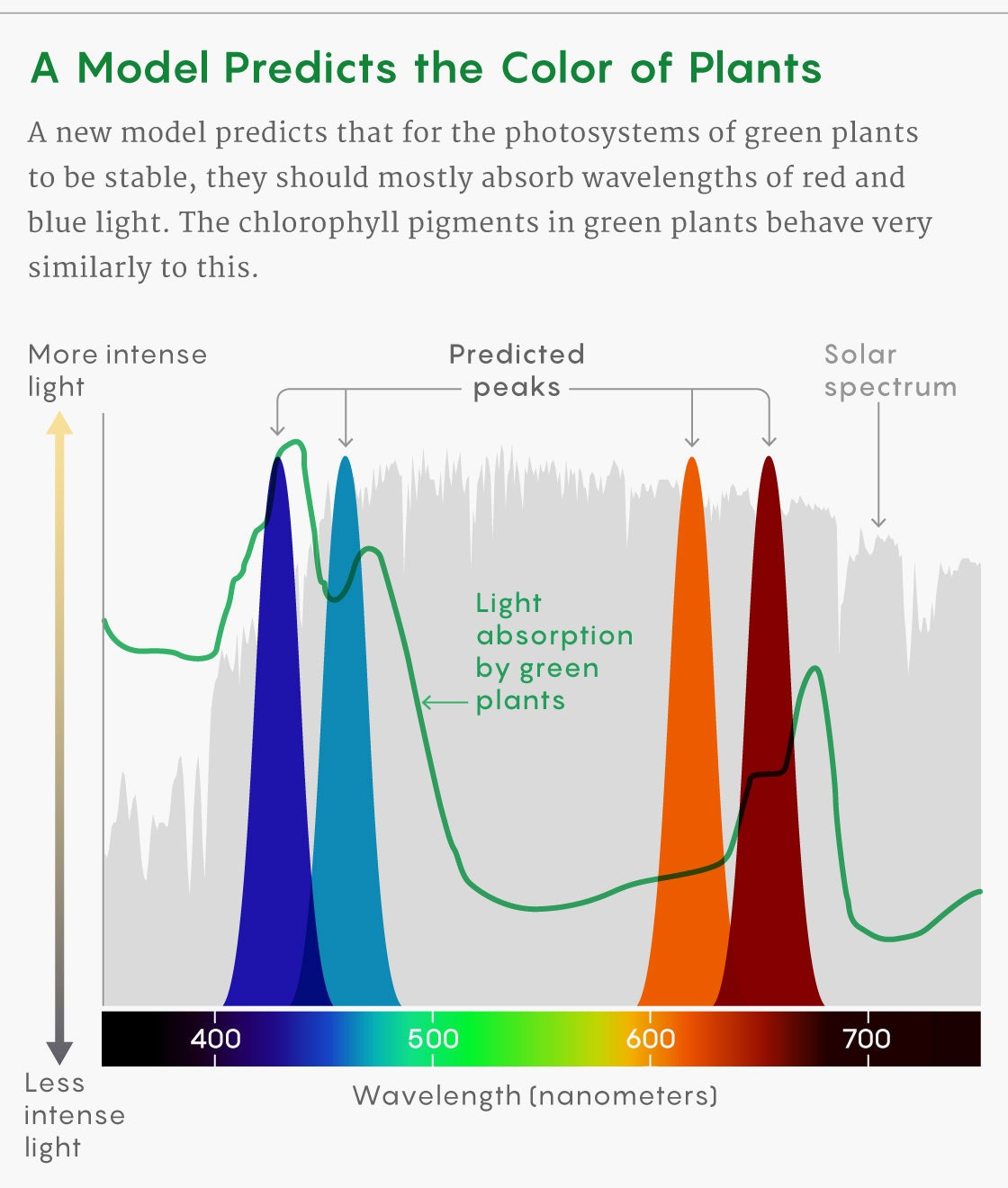 20200805.Why-Are-Plants-Green-The-Answer-Might-Work-on-Any-Planet-02.jpg